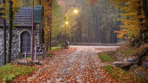Неповторні парки України, які варто відвідати у жовтні: готові маршрути