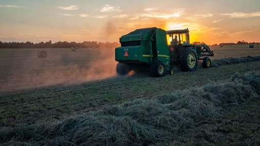 Ринок землі в Україні: чи продаватимуть землі іноземцям й що варто знати орендарям