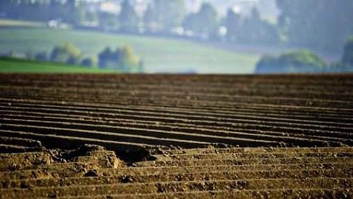 Чекайте до 2024 року, – Фурса радить українцям не спішити продавати земельні паї