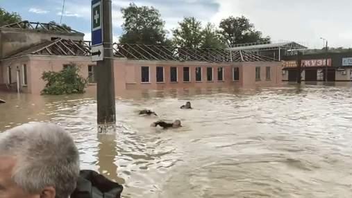 Вплав за Аксьоновим: окупантам в затопленій Керчі не вистачило човна – курйозне відео