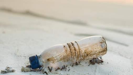 С другого конца света: португалец нашел послание в бутылке, которая плыла по океану 3 года