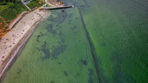"""В Одесі продовжує """"цвісти"""" Чорне море: вода тепер зеленого кольору – приголомшливі фото"""