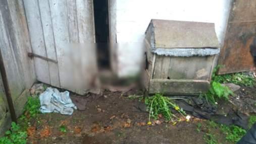 На Рівненщині судитимуть чоловіка, який молотком жорстоко вбив собаку