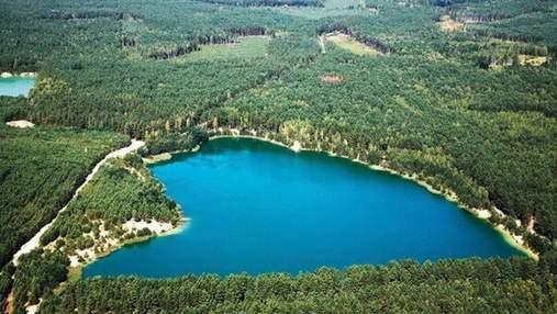 З Чернігова запустили автобуси до знаменитих Блакитних озер: чому варто їхати