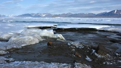 Найпівнічніший острів у світі: біля Гренландії науковці зробили випадкове відкриття