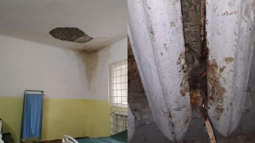 Мертвые крысы и мокрые стены: в офисе омбудсмена ужаснулись условиями во львовской тюрьме