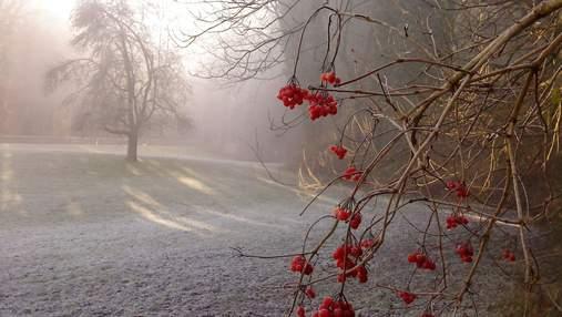Синоптики попередили про різке похолодання в Україні: коли його чекати