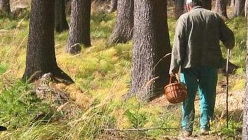 Пропавшего на Львовщине грибника нашли мертвым в лесу