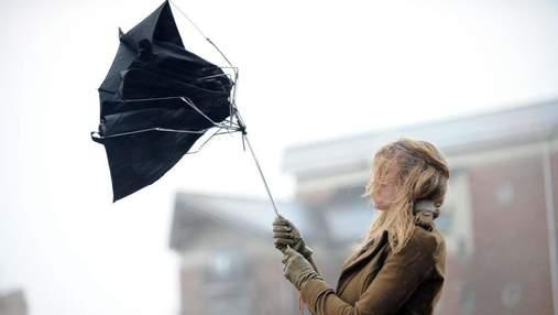 Можуть падати дерева та рекламні конструкції: у Києві оголосили штормове попередження