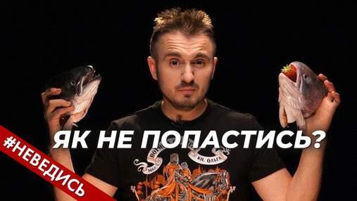 В поисках работы за рубежом: как украинцам не пополнить кошельки мошенников