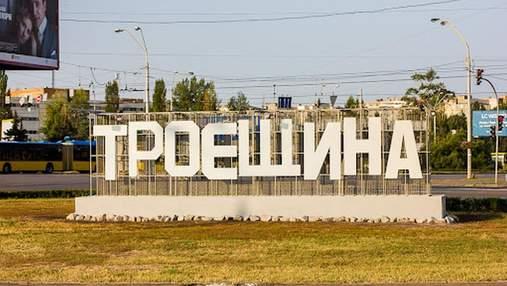 """Киевлянин проехал через полгорода, чтобы спилить букву """"Т"""" в названии Троещины"""