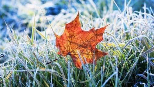 Синоптики предупредили о первых заморозках: прогноз погоды на Львовщине на 7 – 11 октября
