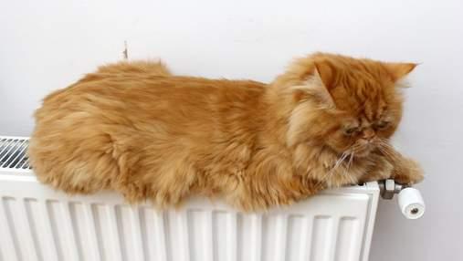 Во Львове почти во все дома уже дали отопление: что делать, если тепла еще нет