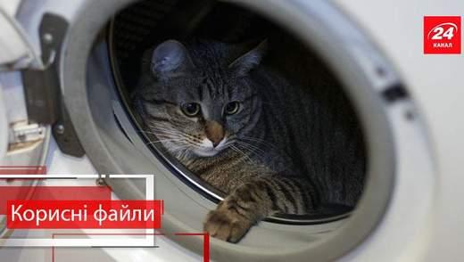Корисні файли. Як правильно чистити пральну машинку