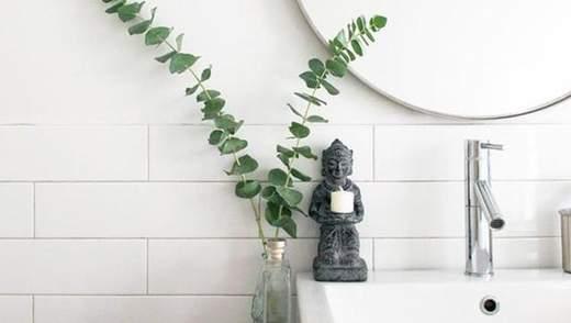 Эвкалипт в ванной: варианты модного декора