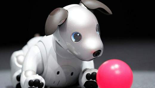 """Робот-собака від Sony вийшов на міжнародний ринок: ціна """"кусається"""""""