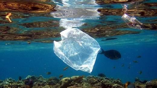 В Чилі створили поліетиленові пакети, що розчиняються у воді