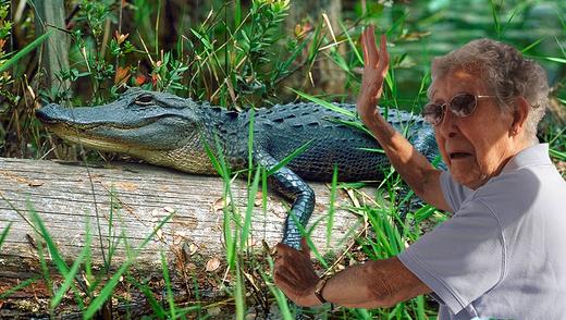 Бабця з Техасу вбила алігатора, щоб помститися за свого поні