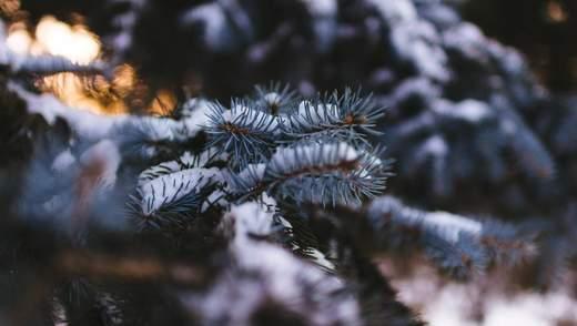 30 листопада – яке сьогодні свято та що не можна робити в цей день