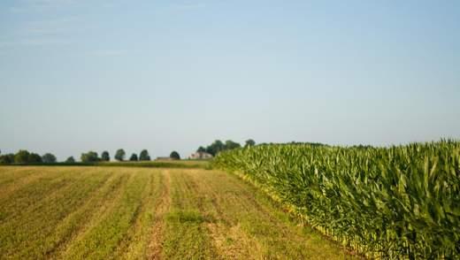 В Украине создали портал по оценке земли: как он работает