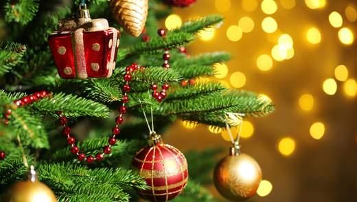 Главные новости 28 декабря: заявление Епифания о переносе Рождества и взрыв автобуса в Египте