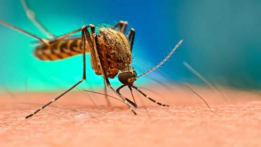 Малярію можна повністю знищити за 30 років: розповіли як