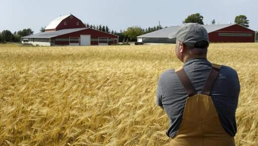 Яку допомогу фермерам надаватиме українська влада, аби запрацював ринок землі