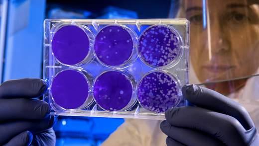 У пацієнтів з Бразилії виявили два нових види вірусів, які ніколи не зустрічалися у людини