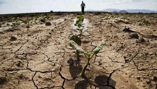 На Одещині фермер вчинив самогубство через втрату врожаю