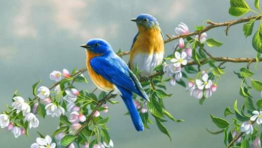 30 мая – какой сегодня праздник и что нельзя делать в этот день