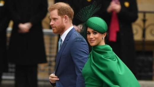 Принц Гарри и Меган Маркл страдают от атак дронов: супруги обратились в полицию