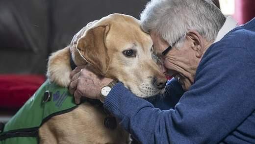 Як собака-помічник робить хворих на деменцію щасливішими: унікальна історія