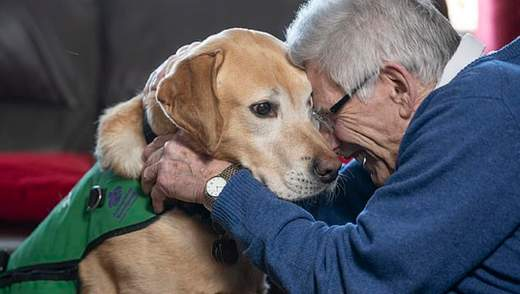 Как собака-помощник делает больных деменцией счастливее: уникальная история