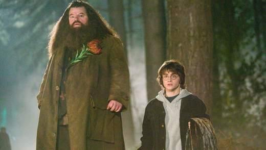 """Хагрид из """"Гарри Поттера"""" вступился за Джоан Роулинг в скандале с трансфобией"""
