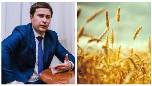 У государства украли 5 миллионов гектаров сельскохозяйственной земли, – Госгеокадастр