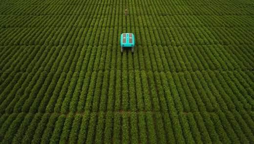 Google показала розумних роботів, які допомагатимуть фермерам: вражаючі фото