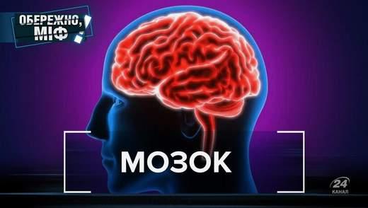 Мозок не старіє, а нервові клітини відновлюються: спростування популярних міфів