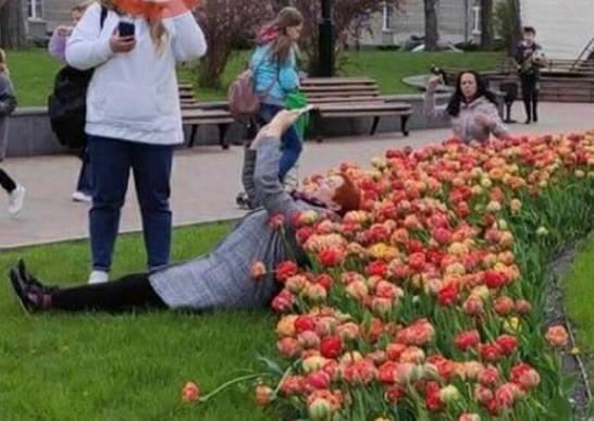 У Києві розцвіли тюльпани