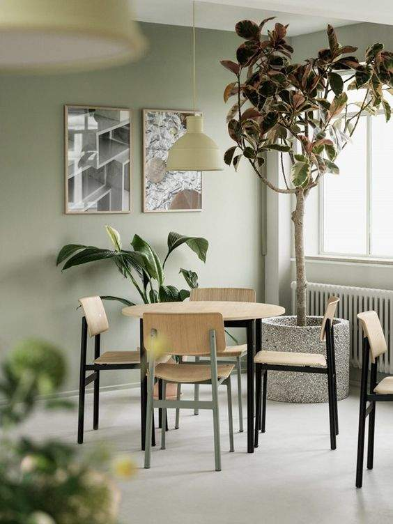 Столовая цвета оливки