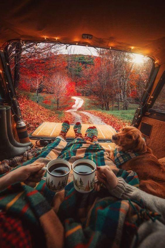 Побачення восени: цікаві ідеї