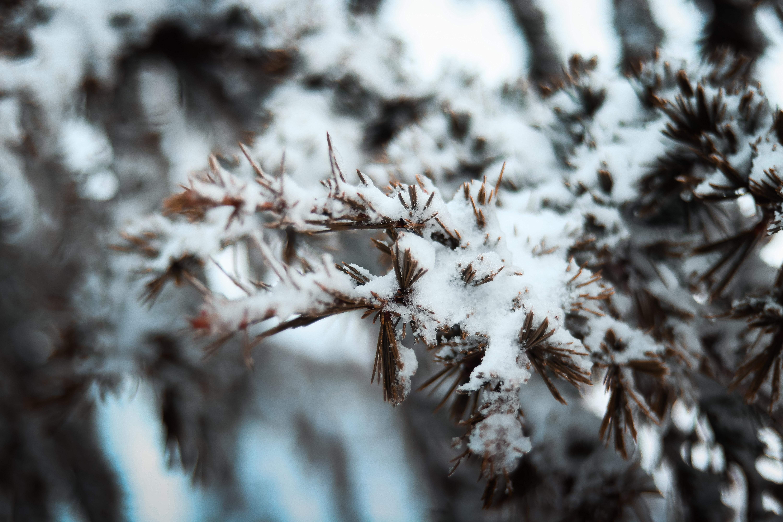 якого кольору сніг