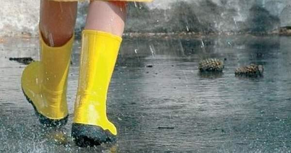 cf477d50367c93 Погода в Україні у п'ятницю, 17 серпня, буде доволі спекотною, проте  дощовою. У західних, північних та центральних областях пройдуть грози та  зливи, ...