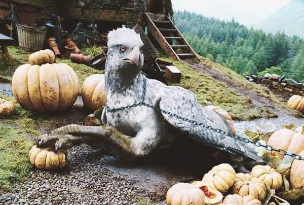 Гіпогриф – чарівна тварина зі світу Гаррі Поттера