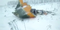 Обломки самолета разлетелись в районе Подмосковья