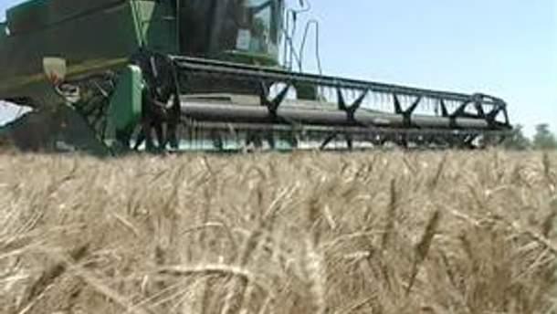 Поставки зернових нового врожаю на зовнішні ринки майже зупинилися