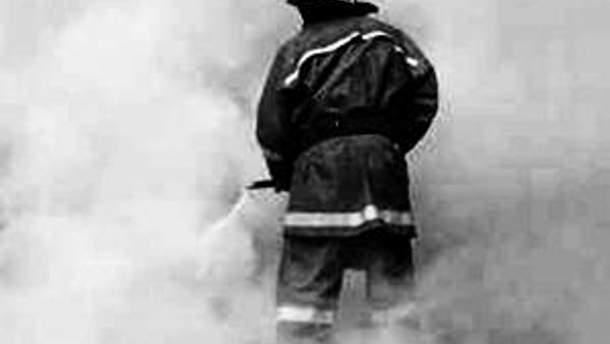 МНС встановлює причини пожежі