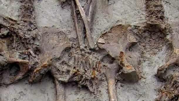 В могиле пара держалась за руки