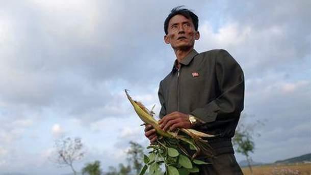 Близько 3 мільйонів корейців недоїдатимуть у 2012 році