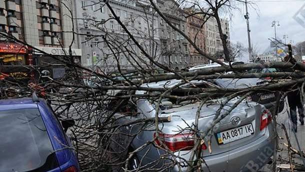 По Украине пронесся сильный ветер