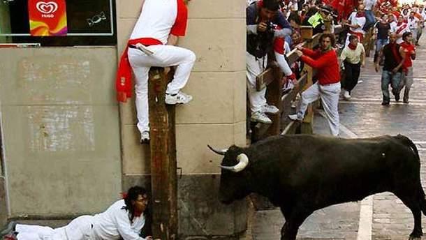 Забег людей и быков в Испании